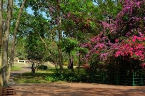 Hin Lek Fai Park